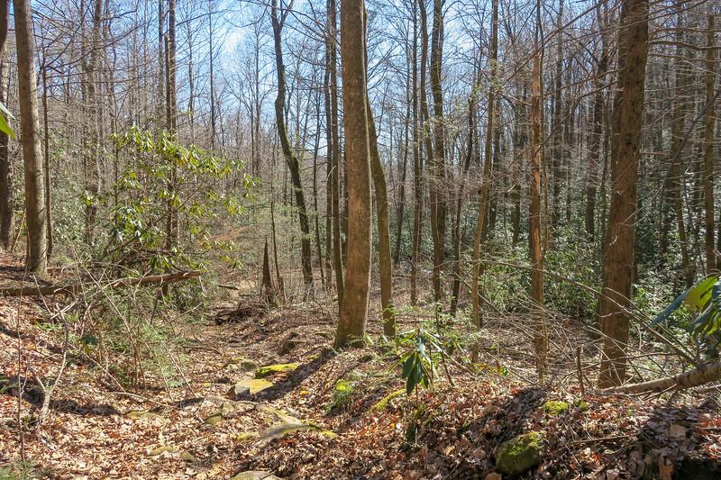 Naturaland Trust Trail -- 1,640'
