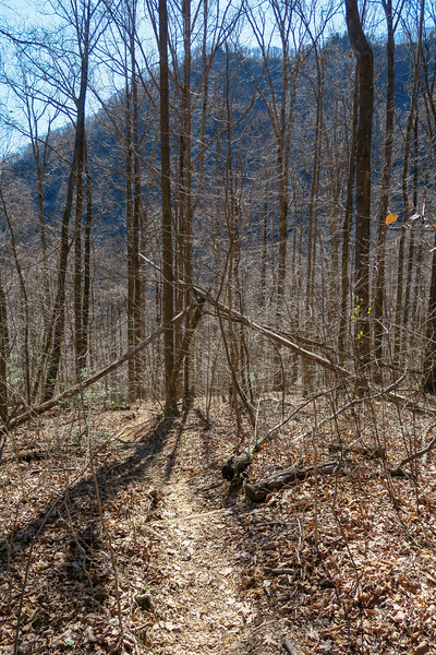 Dismal Trail -- 2,170'