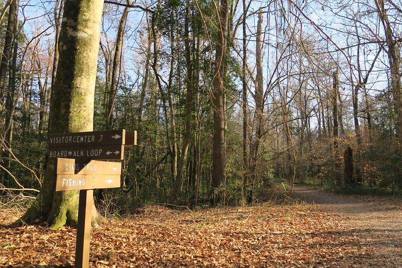 Boardwalk Loop-Sims Trail Junction