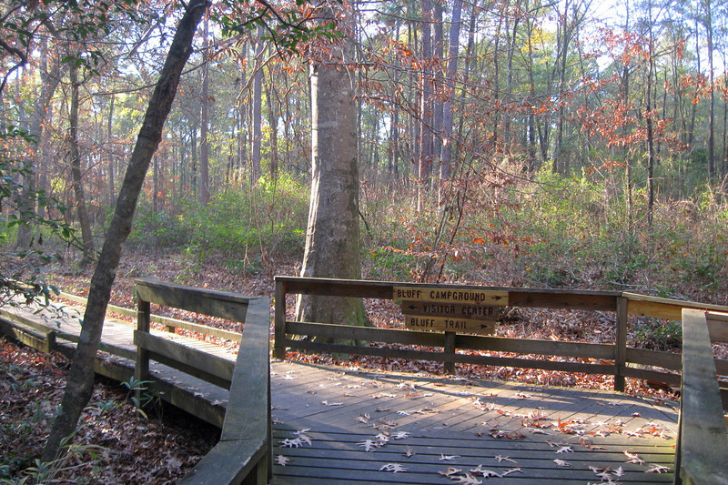 Boardwalk Loop-Bluff Trail Junction
