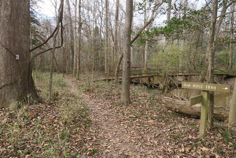 River-Oak Ridge Trail Junction