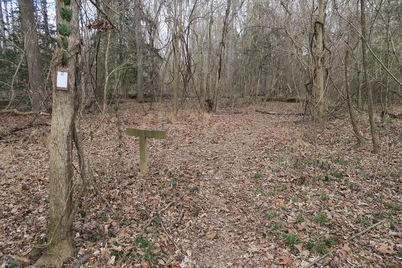 River Trail Loop Split