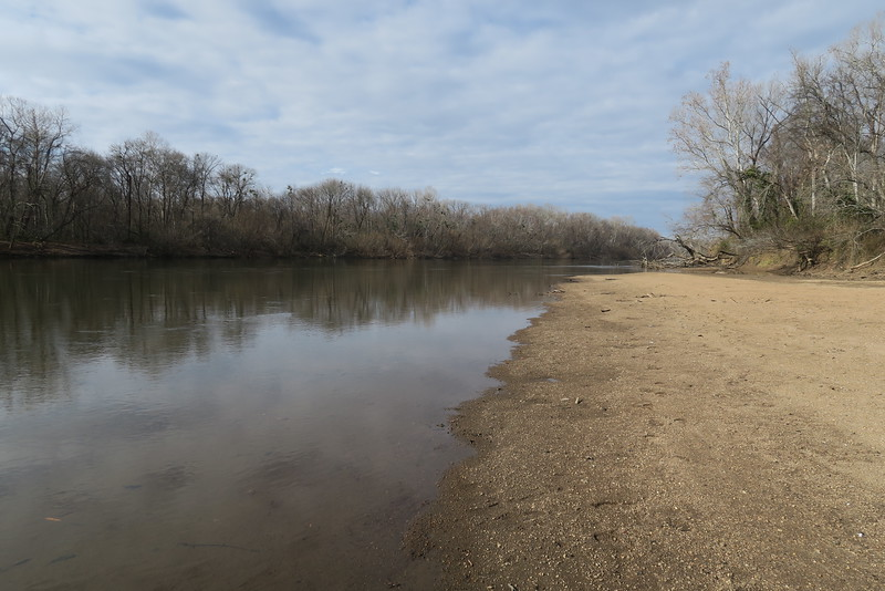 Congaree River Sandbar