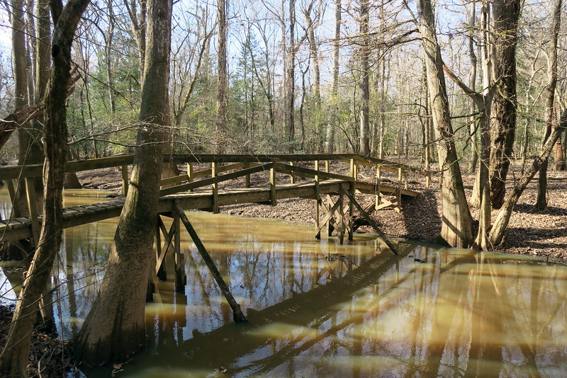 Oak Ridge Trail