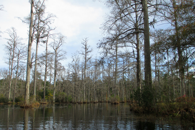 Canoe/Boat Trail