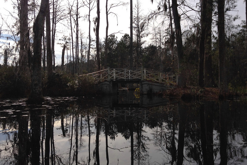 My first test, rowing under this fairly narrow and <i>low</i> bridge...