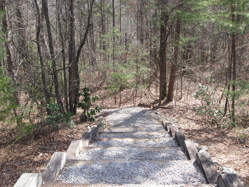 Oconee Bells Nature Trail