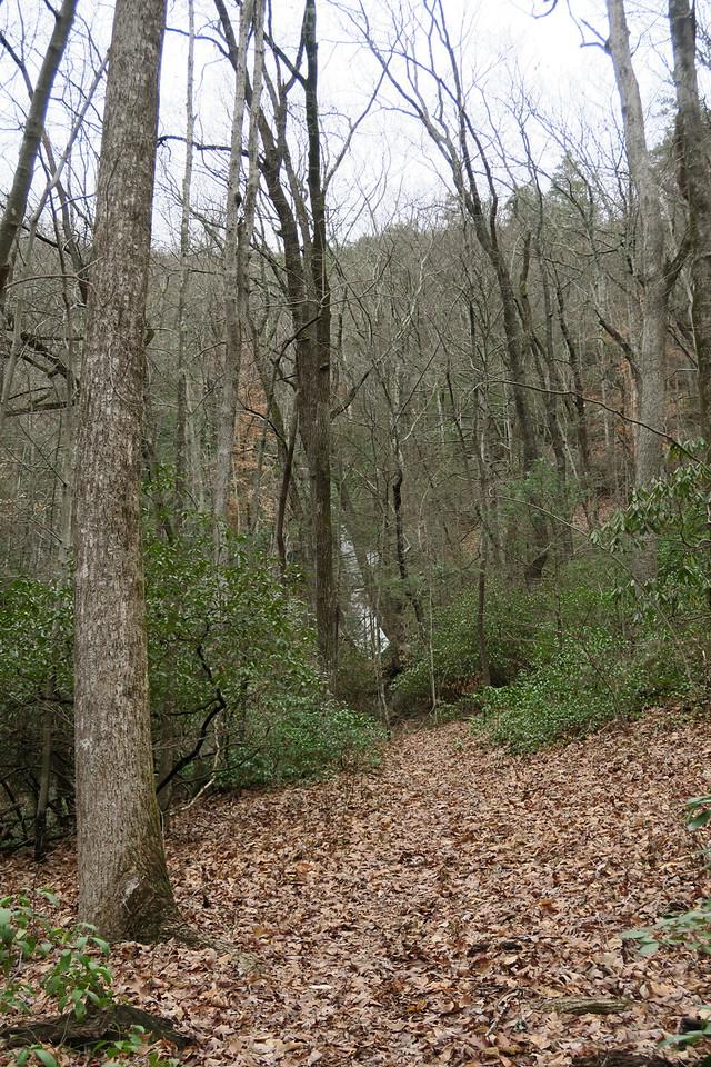 "Little Falls Creek ""spur"""