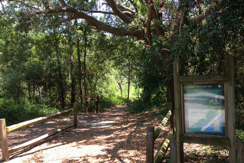 The main hike today would be along the 2-mile Sandpiper Pond Nature Trail...a short hike, but with temps pushing above 90-degrees I figured it'd be about enough...