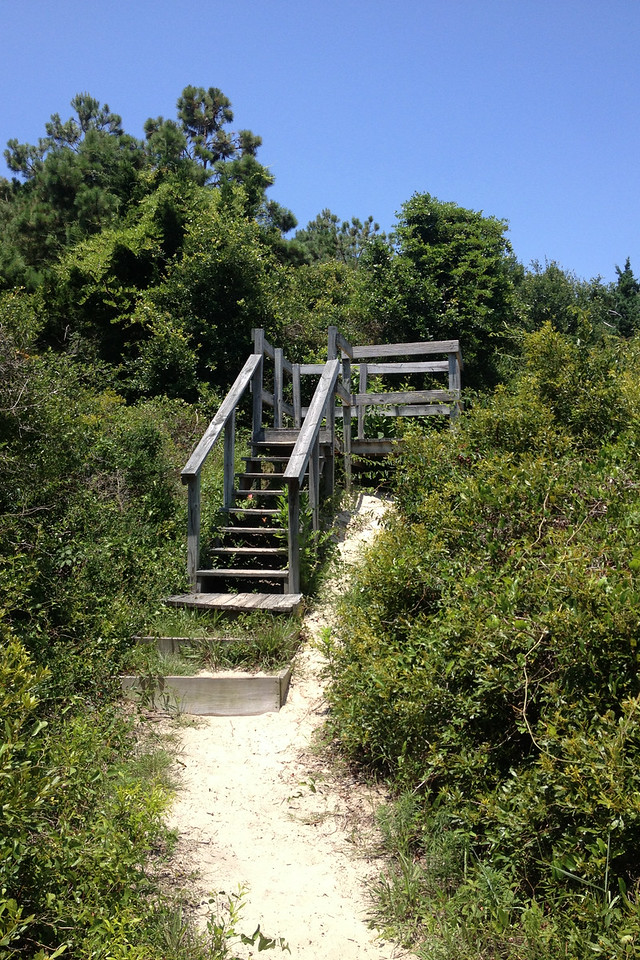 Atop a nearby dune was a wooden platform to give a bit higher view over Sandpiper Pond...