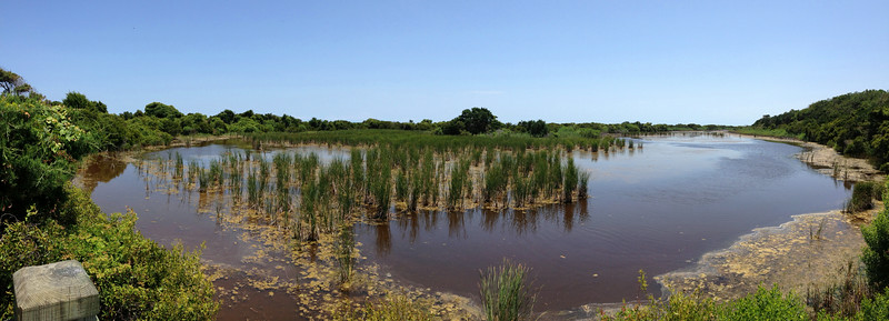 Sandpiper Pond panorama...