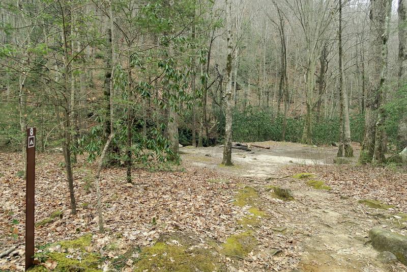 Jones Gap Trail Campsite