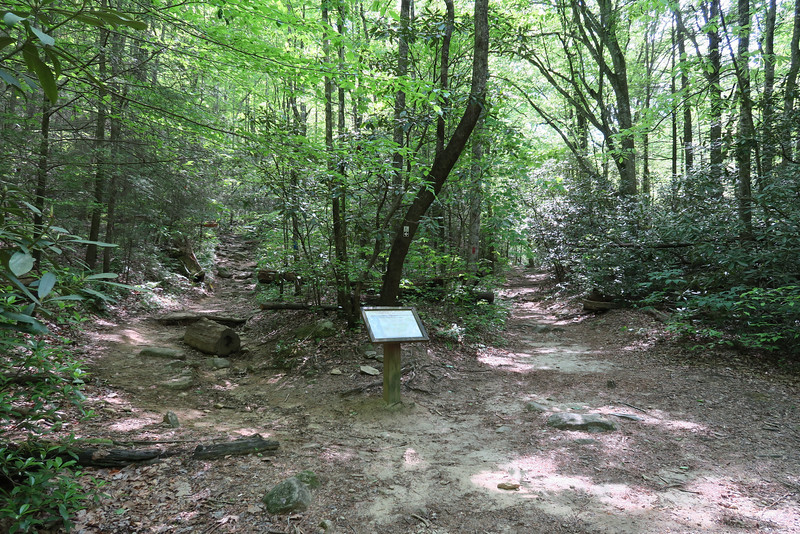 Jones Gap - Rainbow Falls Trail Junction