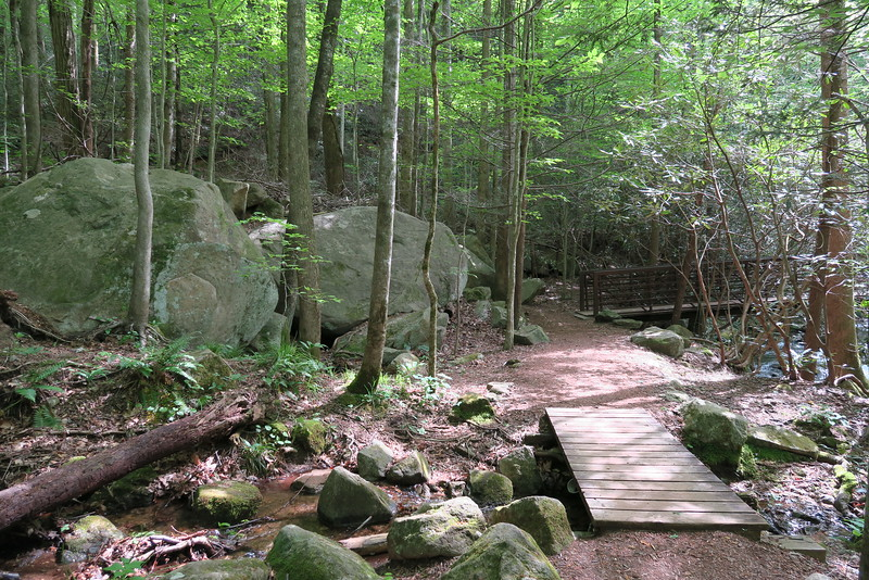 Jones Gap State Park Access Trail