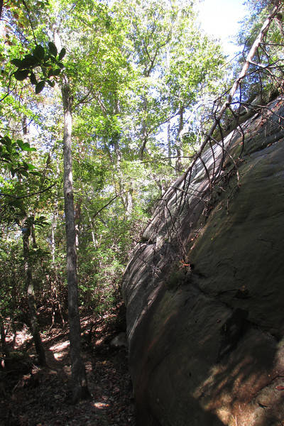 Walking beneath one of the larger cliff faces early on along the Raven Rock Trail...