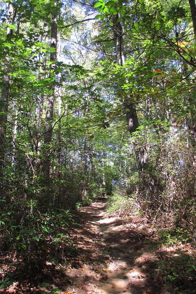 Natural Bridge Trail