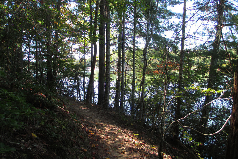 As the Raven Rock Trail runs along the lakeshore it is literally cut into the side of the steep slopes, winding in and out of numerous steep-sided ravines...