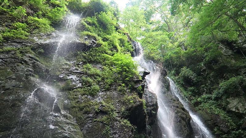 Lee Falls Video