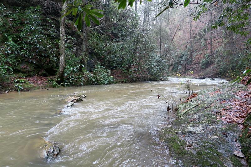 Brasstown Creek