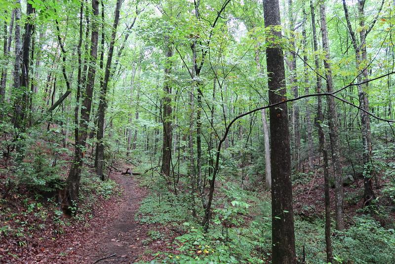 Moonshine Falls Spur Trail