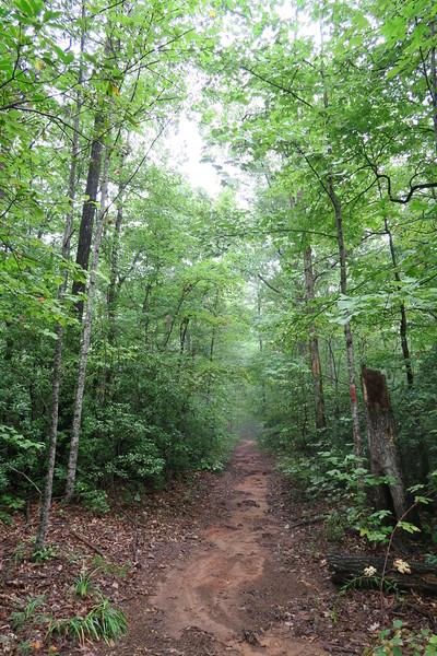 Asbury Trail