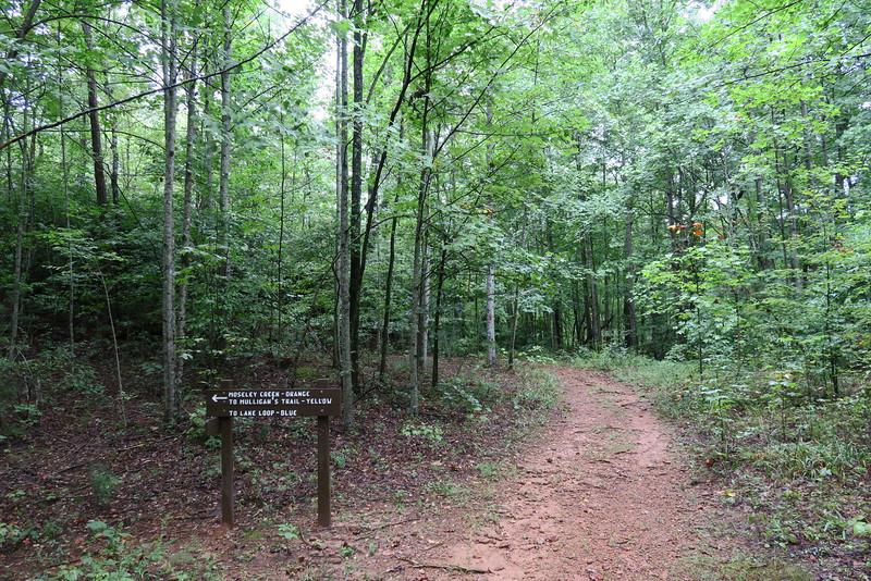 Asbury Trail - Lake Loop Junction