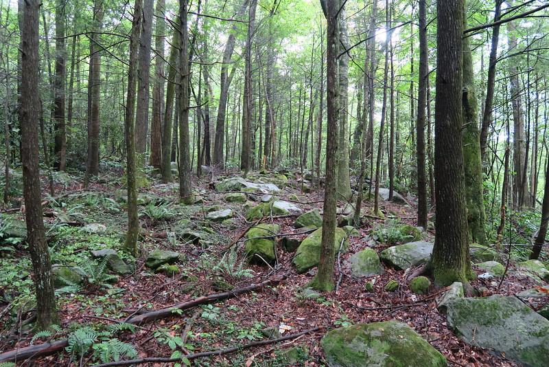 Naturaland Trust Trail