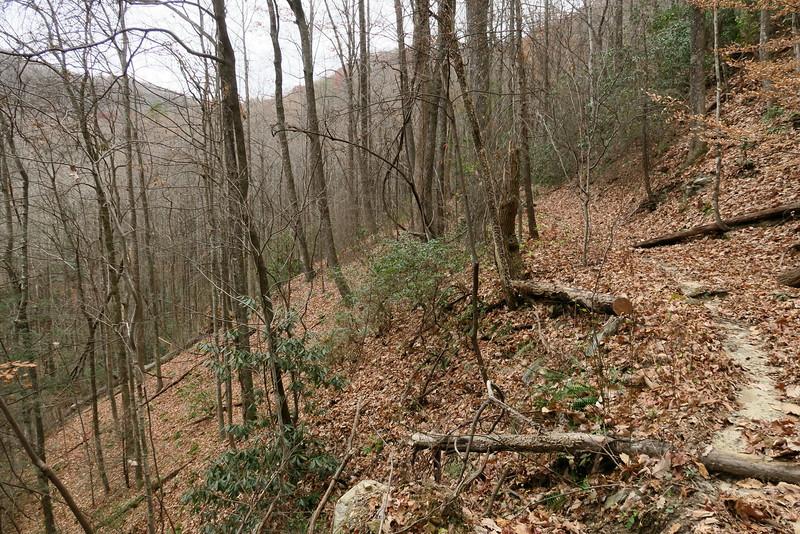 Jones Gap Trail -- 2,300'