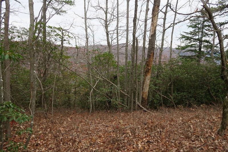 Bill Kimball Trail -- 2,980'