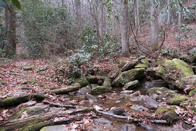 Jones Gap Trail -- 2,180'