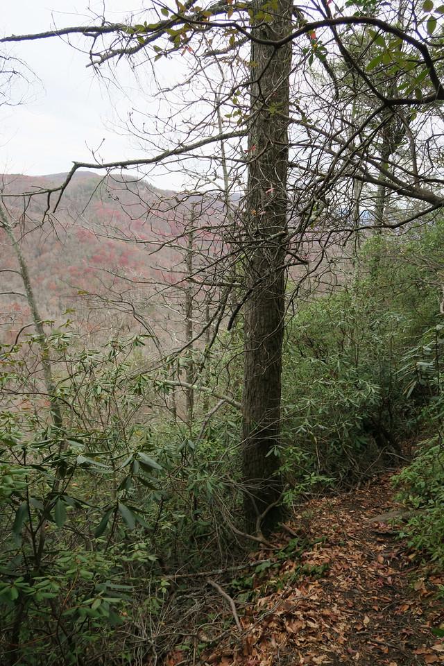 Bill Kimball Trail -- 2,760'