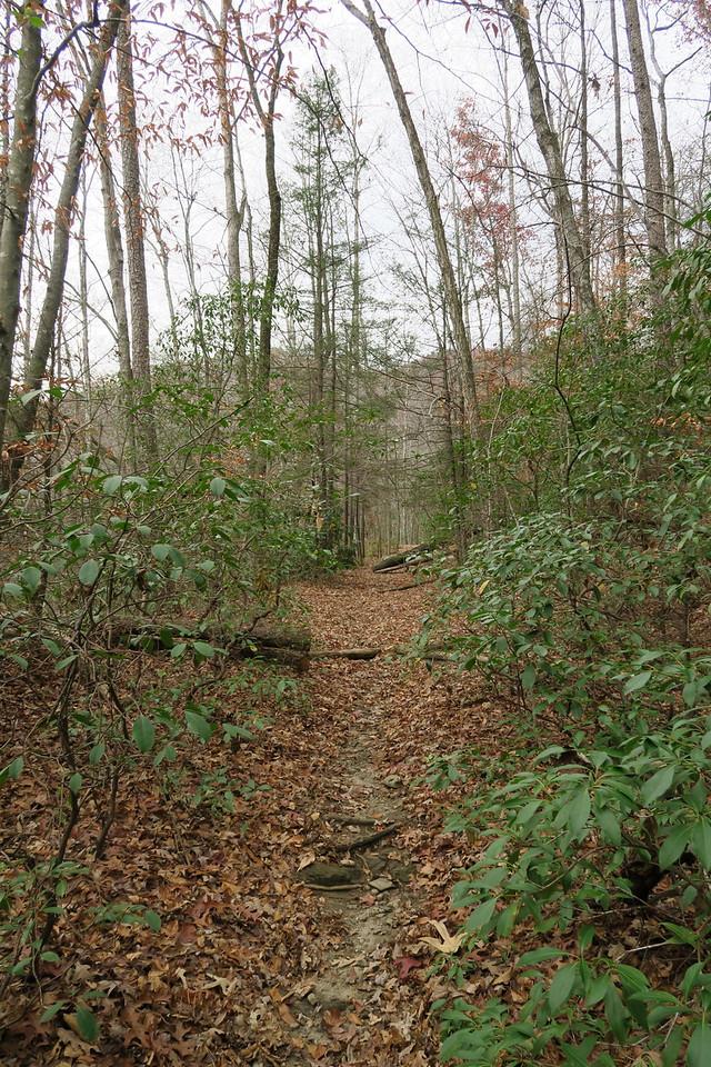 Jones Gap Trail -- 2,080'