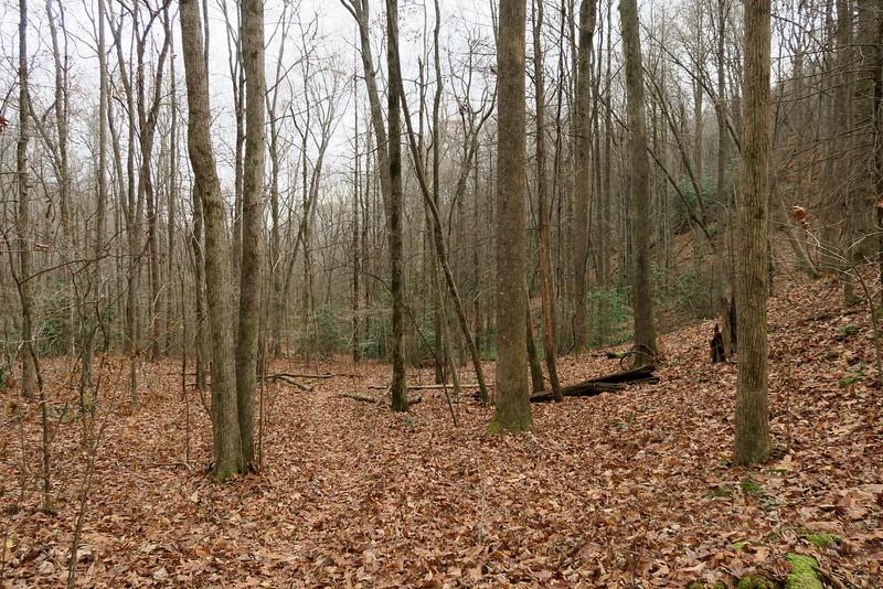 Bill Kimball Trail -- 2,300'