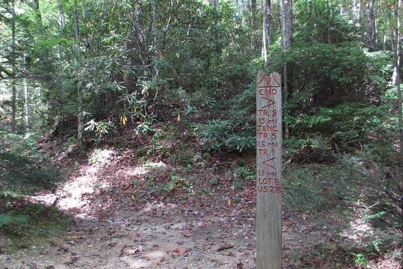 Coldspring Connector-Coldspring Branch Trail Junction
