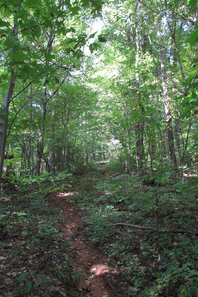 <b>Rim of the Gap Trail</b> - Grinding uphill once again...