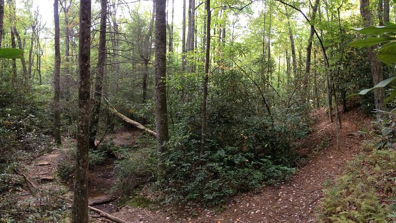 Frank Coggins Trail