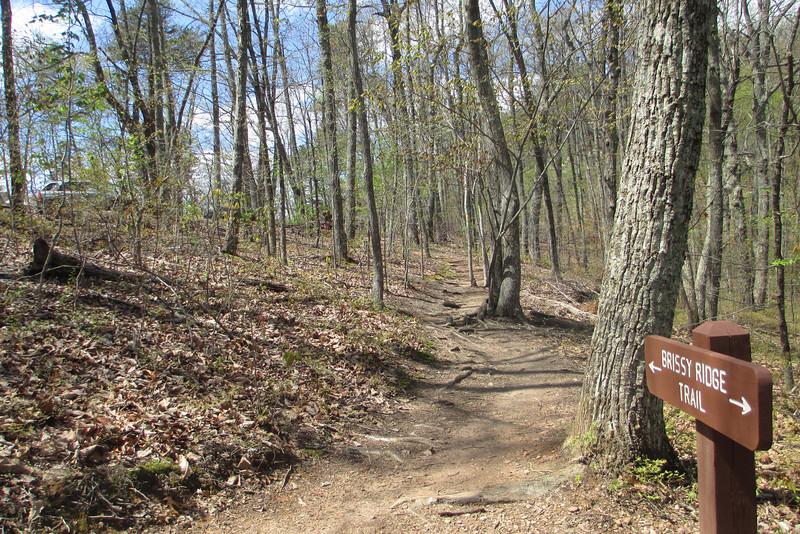 Brisssy Ridge Trailhead...