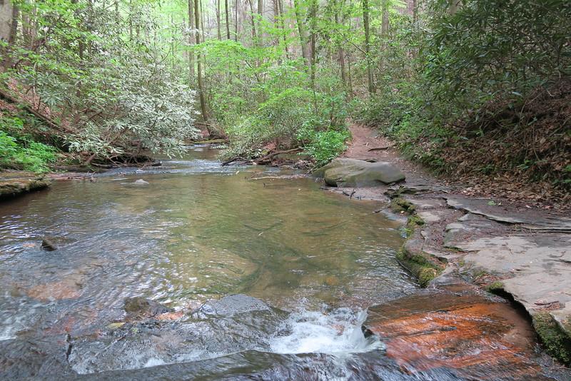 Carrick Creek Trail - 1,240'