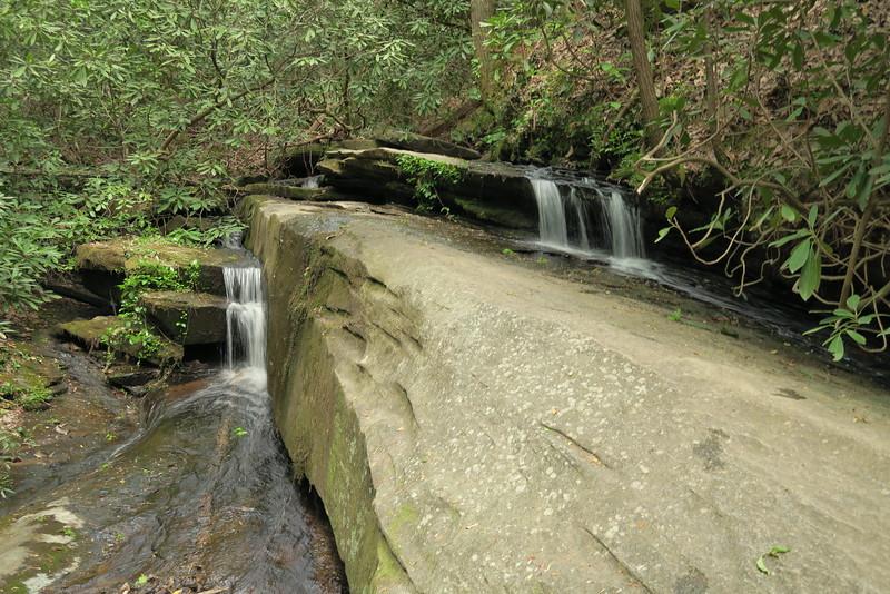 Carrick Creek Trail - 1,340'