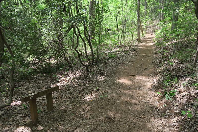 Pinnacle Mountain Trail - 1,550'