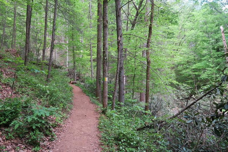 Carrick Creek Trail - 1,300'