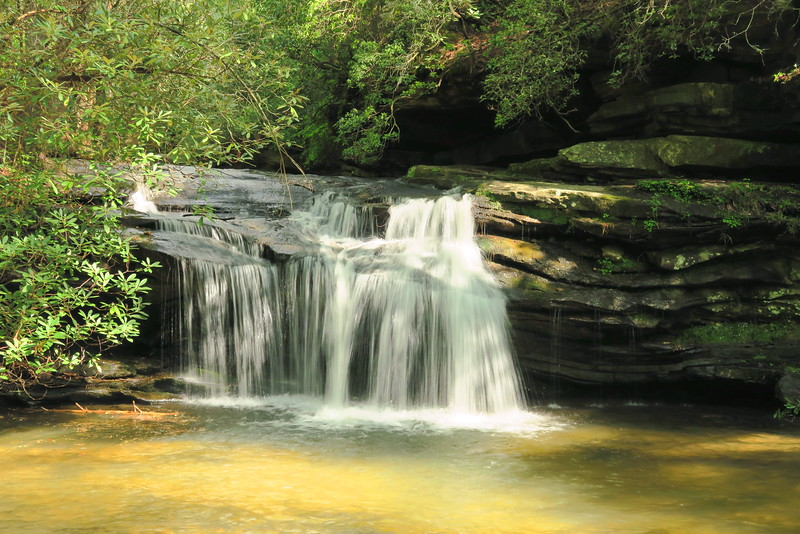 Carrick Creek Falls - 1,180'