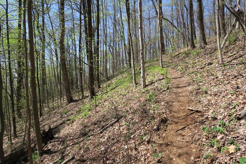 Ridge Trail - 3,000'
