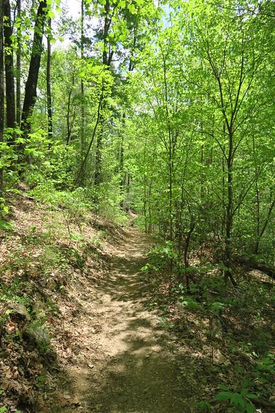 Pinnacle Mountain Trail - 1,840'