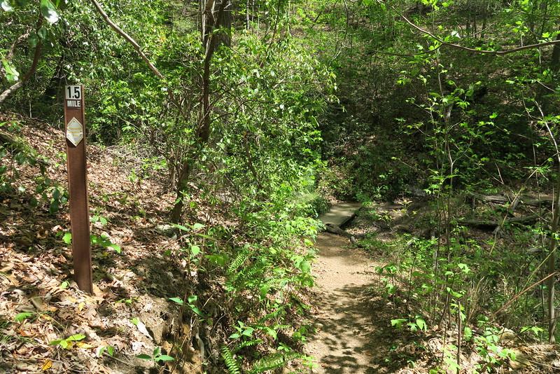 Pinnacle Mountain Trail - 1,700'