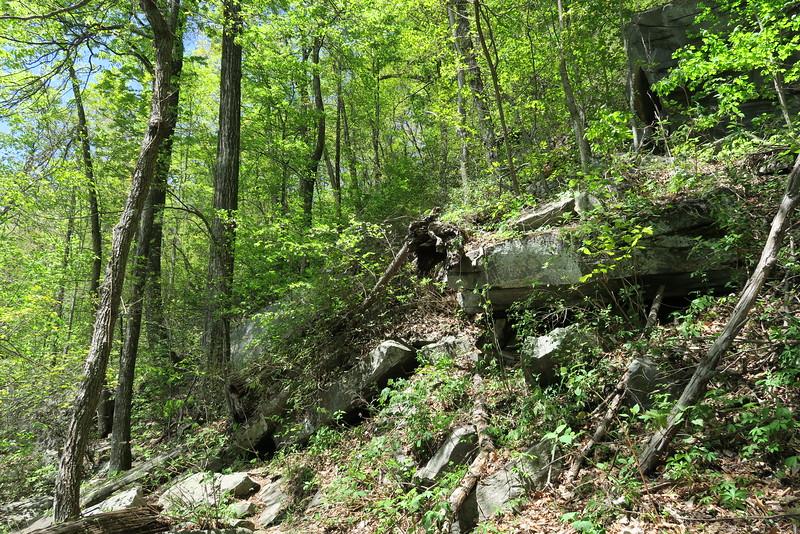 Mill Creek Falls Trail - 2,160'