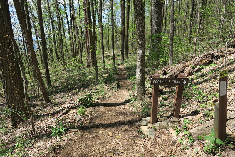 Pinnacle Mountain-Foothills Trail Junction - 3,000'
