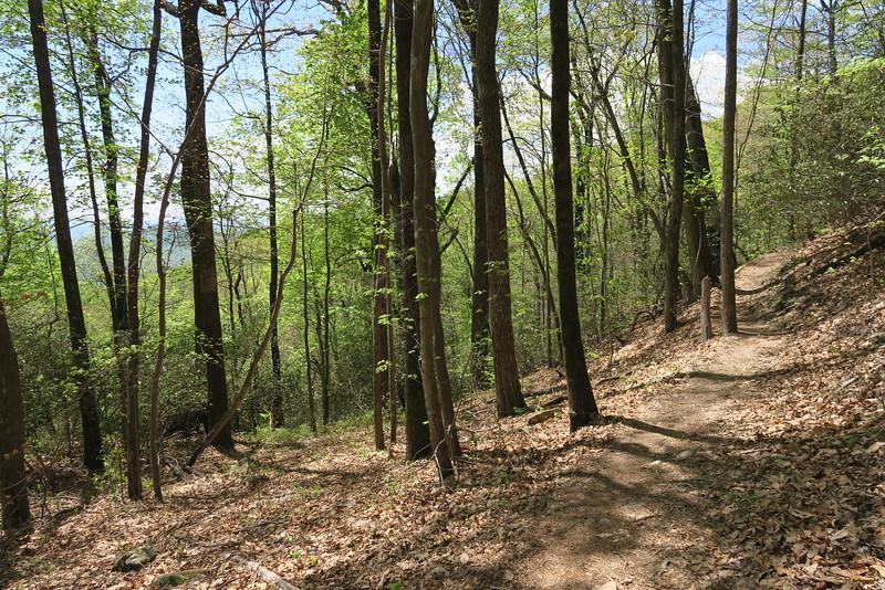 Pinnacle Mountain Trail - 2,300'