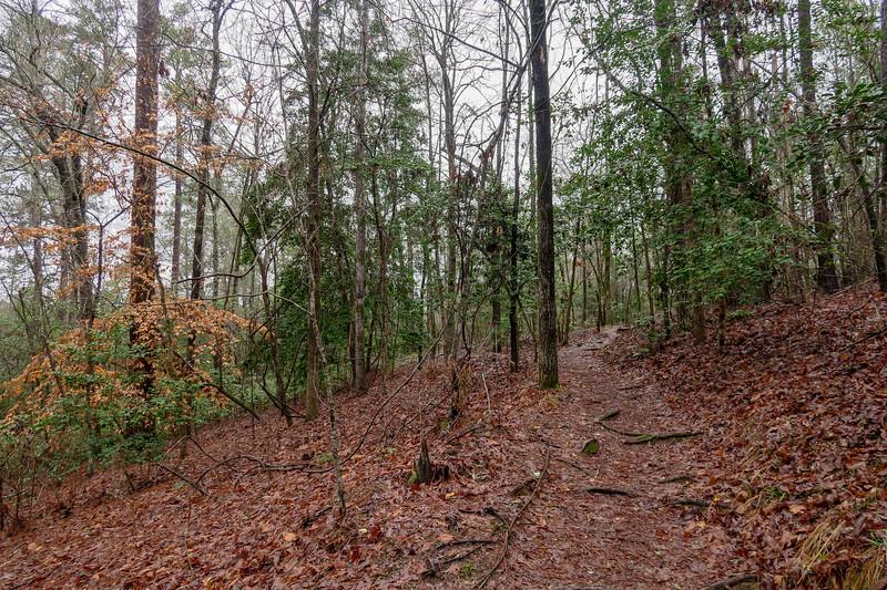 Coquina Trail