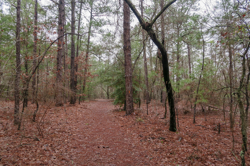 Scout Loop Trail
